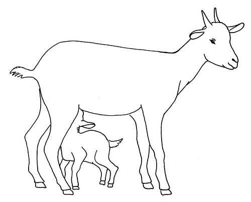 Line drawing of a goat with kid