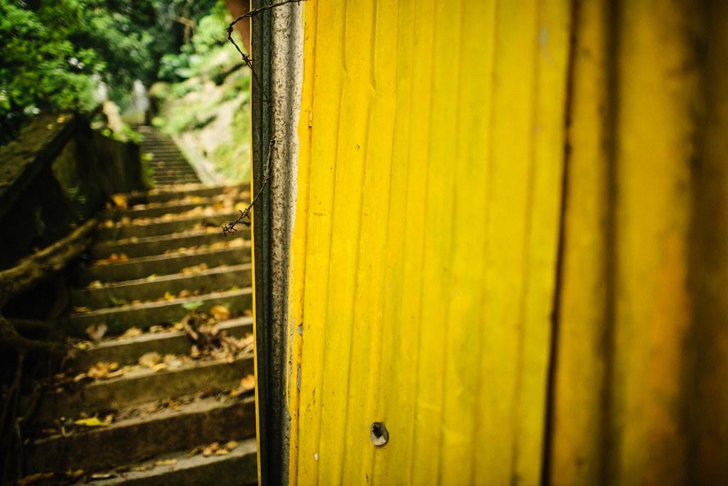 Hong Kong Yellow