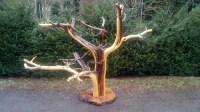 twisted juniper specimen piece.