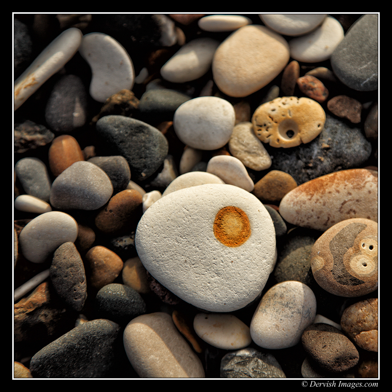 Fried Egg Pebble