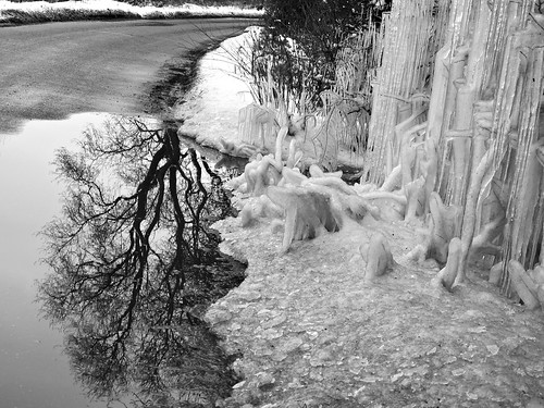 Ice tree effect