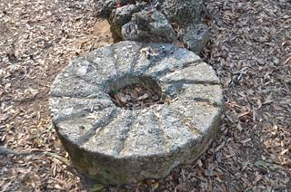Millstone at Poinsett State Park
