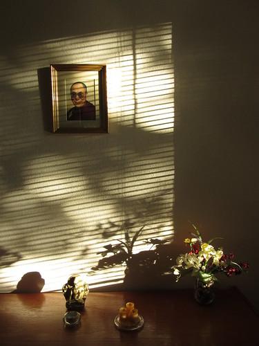 sunlight on the shrine