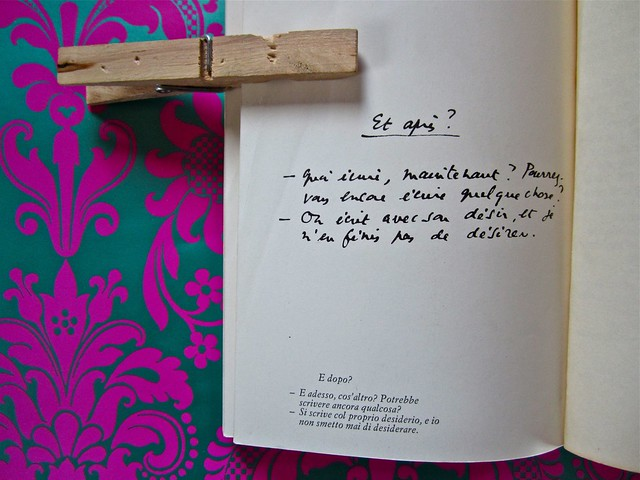 Barthes_mondino_novaro_3