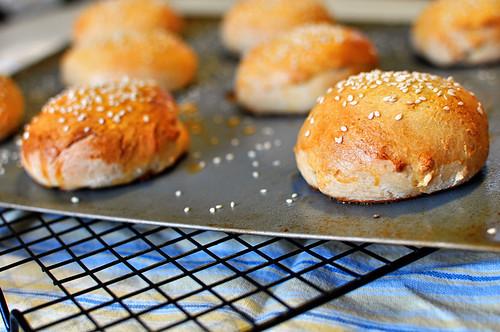 Hamburger Buns 3