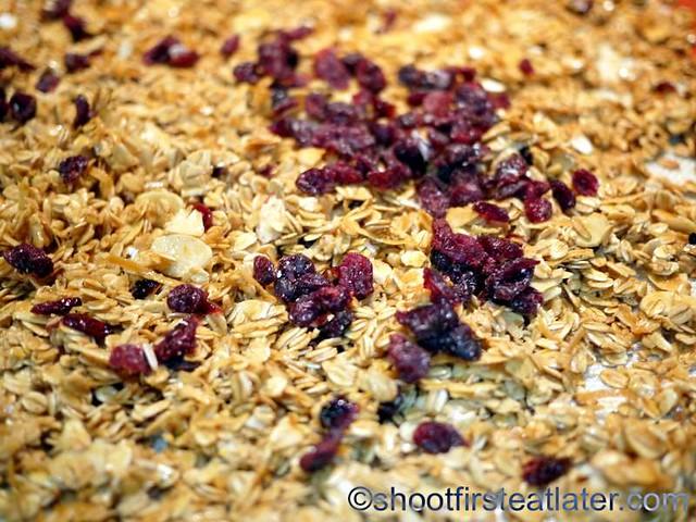 cranberry coconut almond granola-007