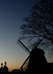 Mühle Blaue Stunde 2