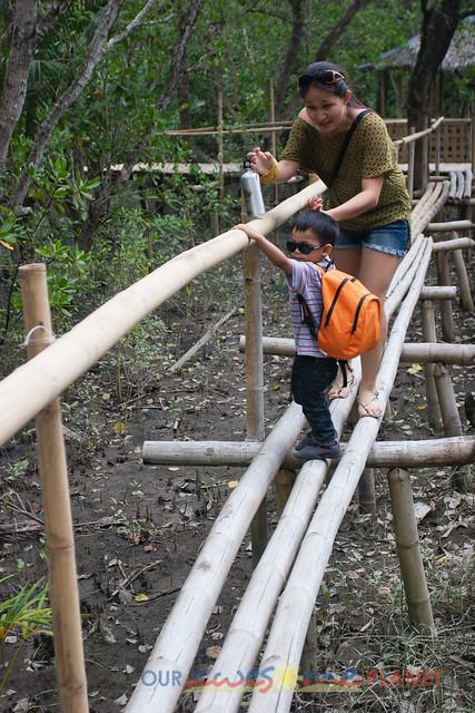 Bakhawan Eco-Park-92.jpg