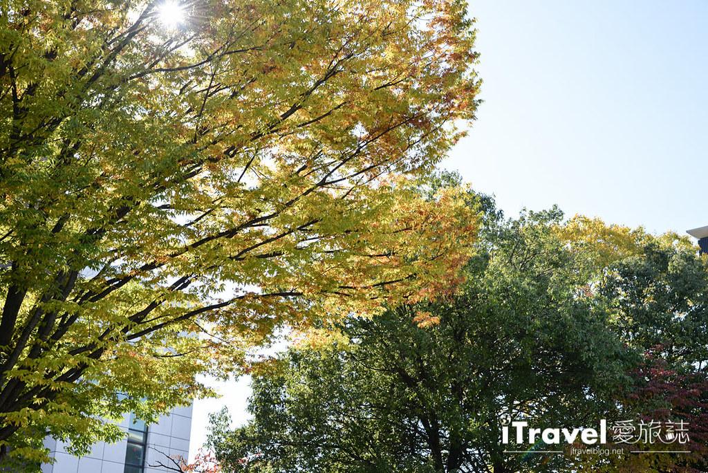 《日本长野景点》松元市美术馆 Matsumoto City Museum of Art,一探草间弥生幻境作品与美食Bistro Cen time