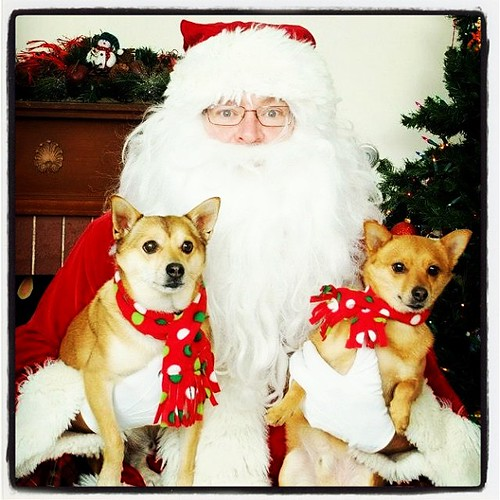 Simon and Rudy wish you and yours a happy holiday season!