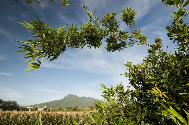 Lawiswis ng Kawayan   Swishing of Bamboo