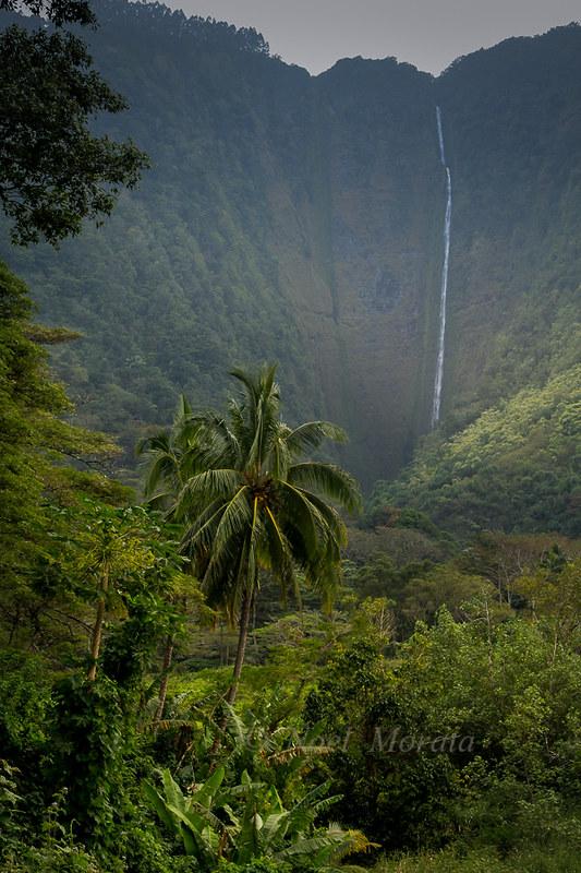 Waipio Valley, waterfall view