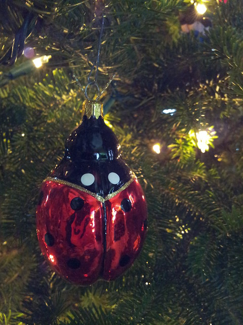 Ladybug in the Tree
