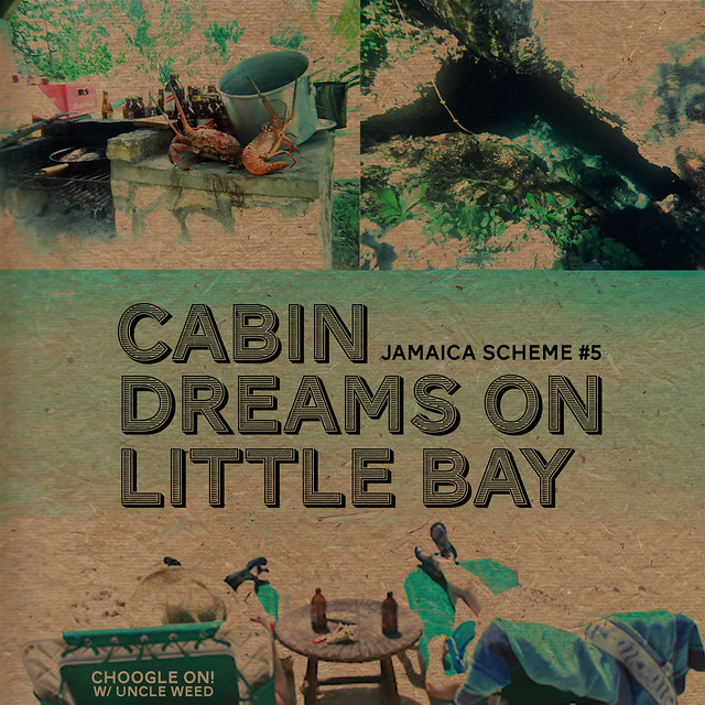 Cabin Dreams in Little Bay