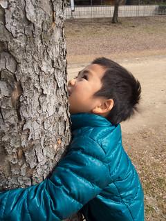 木に抱きつく