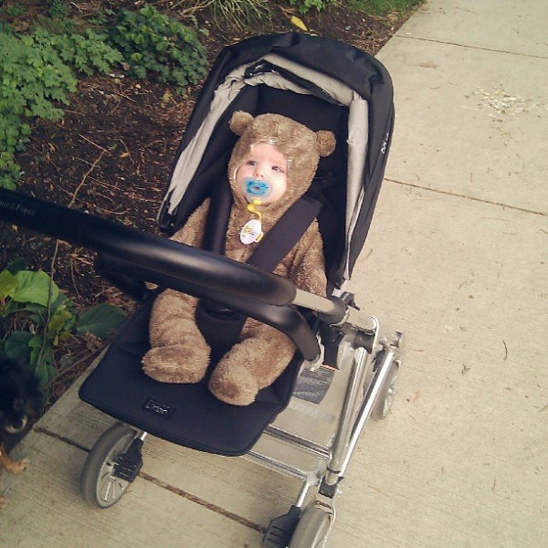 Making the switch from pram to regular stroller. Also one last hurrah for the baby bear suit. #tinybuttonsblog