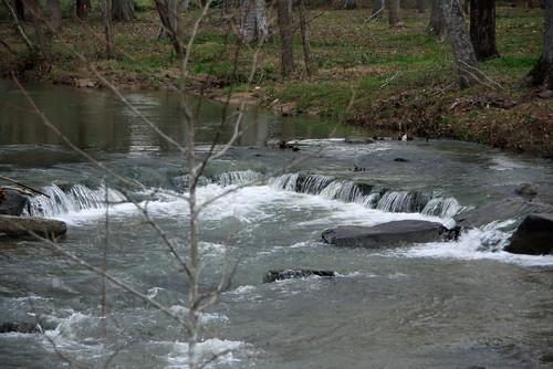 4/365 ~ Creek behind Maddox Middle School