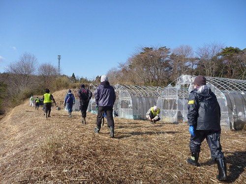 南相馬市原町区でお手伝い(ボランティアチーム援人, 2013年2月23日) Volunteer work at Minamisoma city, Fukushima pref. Affrected by the Tsunami of Japan Earthquake and Fukushima Daiichi nuclear plant accident.