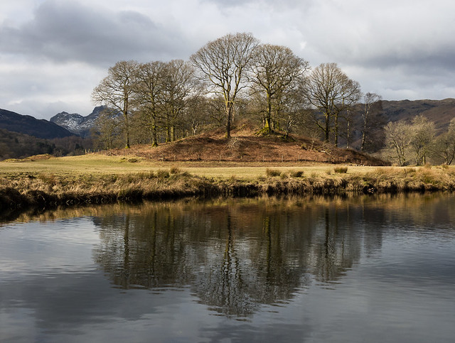 Elterwater trees in colour