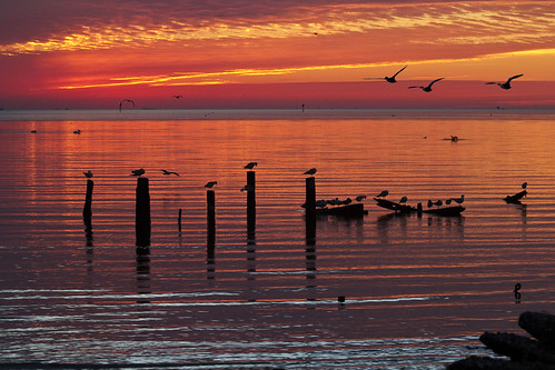 Sunrise on Galveston Bay - EXPLORED - March 16, 2013
