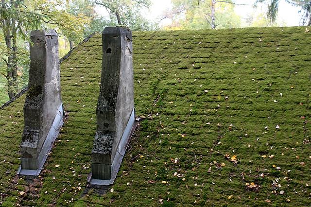 Roof in Transylvania