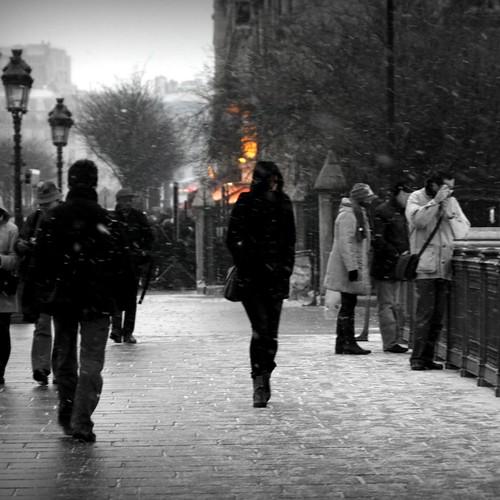 Urban Chronicles  ~  Notre Dame de Paris ~ MjYj by MjYj