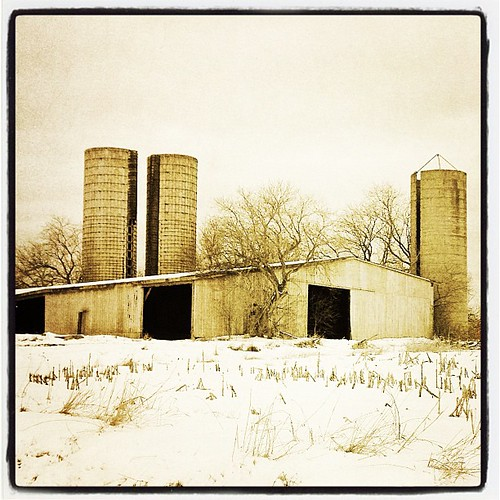 Mar 4 - three {3 silos} #photoaday #barn #silos