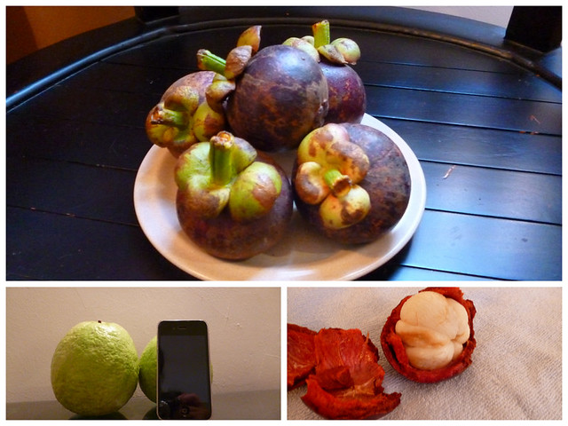 Tropical fruits: Mangosteen and guava