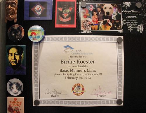 20130302. Birdie graduates!