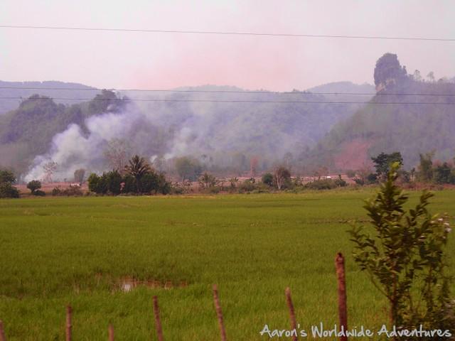Rice Fields on Fire