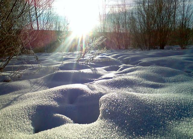 Тропинка в снегу // Path in snow