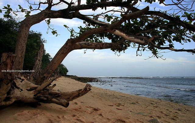 Quinamanucan Island Camarines Norte