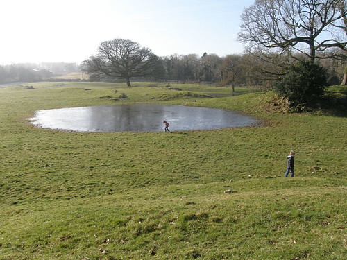 The new ponds
