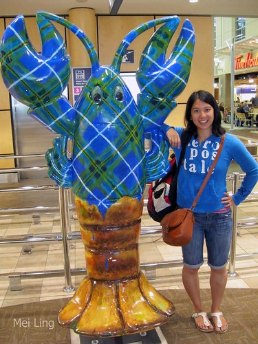 me and the lobster