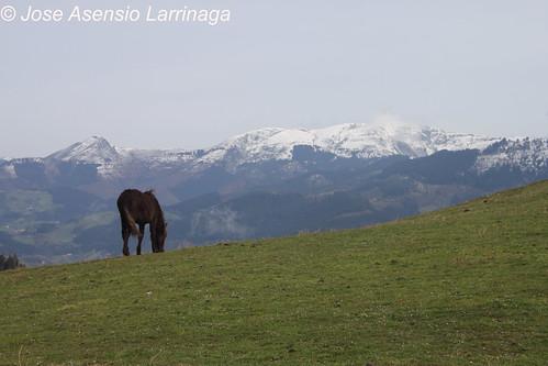 Vistas al Ganeko #DePaseoConLarri #Photography  57