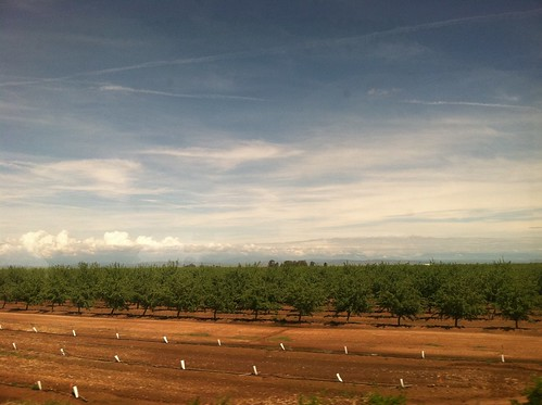 Sun came out, from Amtrak