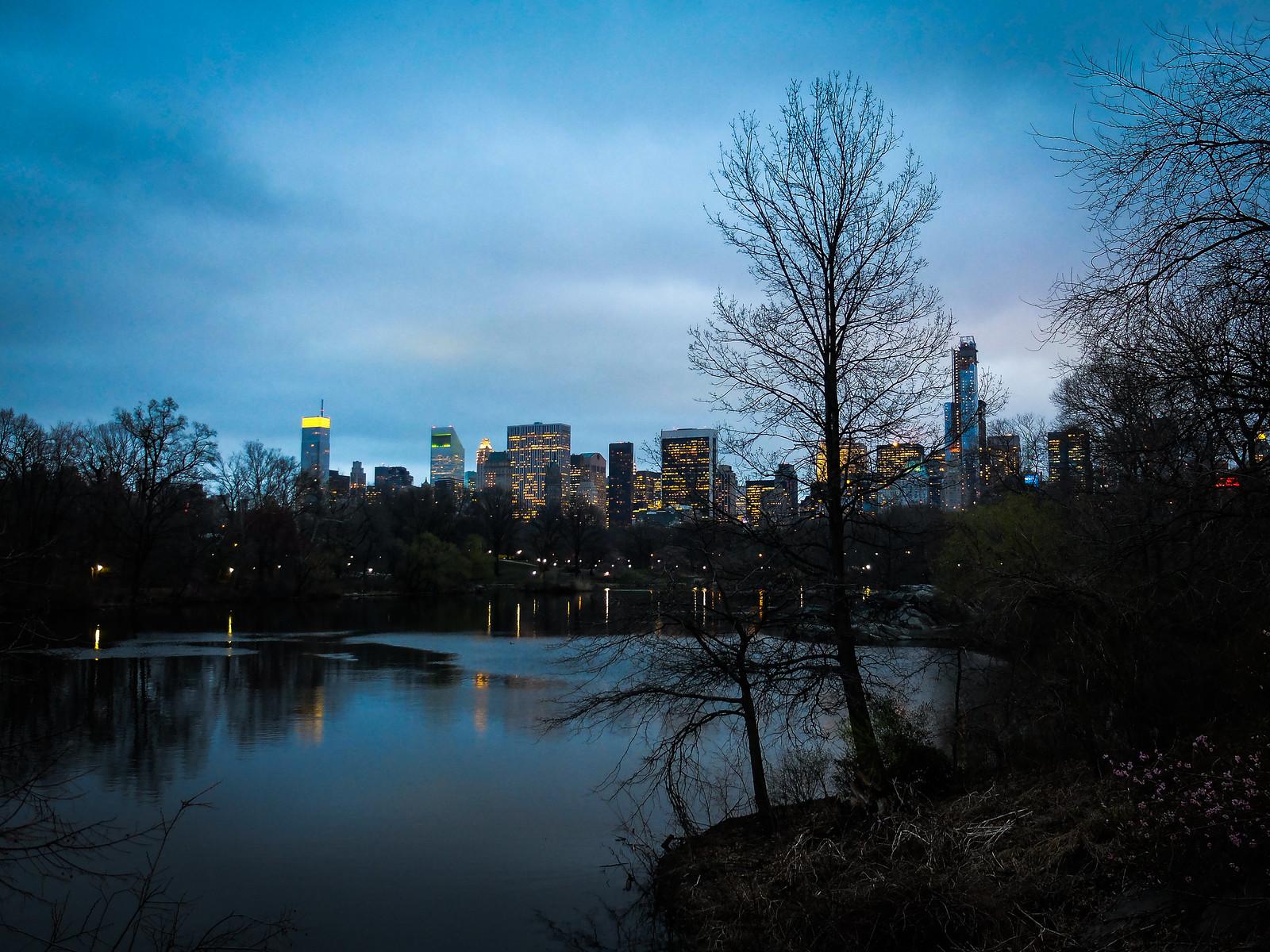 Illuminated Skyline by wwward0