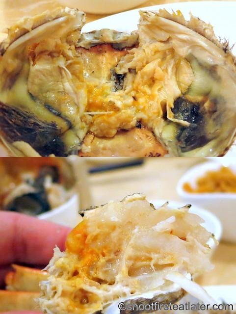hairy crab-002