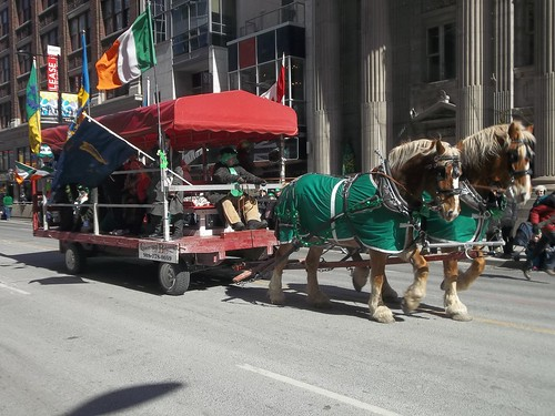 Horses of the St. Patrick's Day Parade (3)
