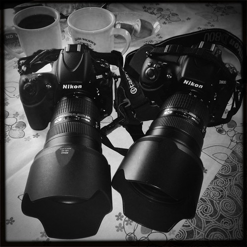 Meet The Nikon Twins by Davidap2009