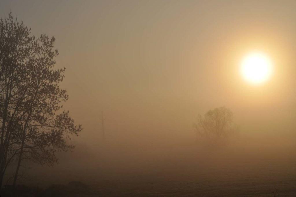 South_Bohemia_Mist_02