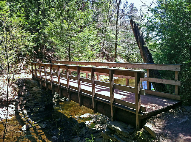 The first of several bridges in Glen Leigh.