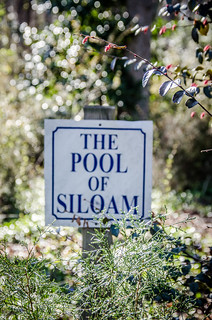The Pool of Siloam