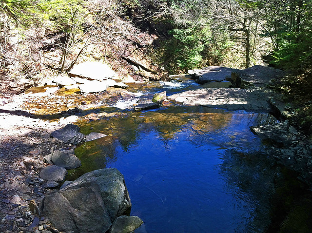 A pool below Onondaga Falls in Glen Leigh.