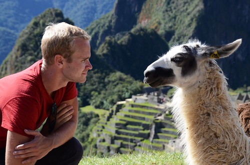Me and the llama having a moment