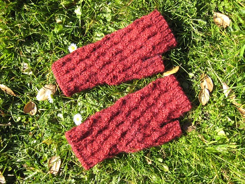 Mitts_2013_01_16_Reticulated-Mitts_1