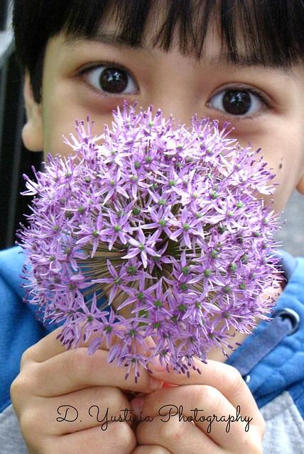 A Boy Holding Allium