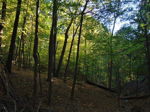 Riverview Park - Oct. 8th 2013
