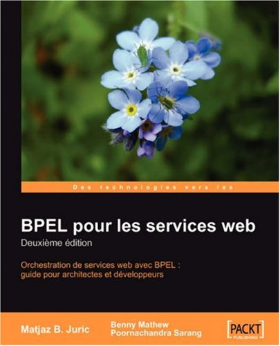 bpel-services-web