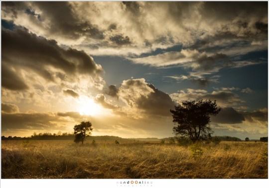 De zon vlak voor zonsondergang